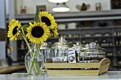 Counter Sunshine 81/215 (uselessbay) Tags: digital nikon jordan rhodeisland sunflowers fullframe 4corners uselessbay tiverton 2015 fujiastia100f d700 mastercollection nikond700 uselessbayphotography williamtalley vsco4