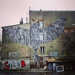 And then you see this #bird by #Dede ... - #Lodz #Poland #streetart #graffiti #urbanart #graffitiart #urbanart_daily #graffitiart_daily #streetarteverywhere #streetart_daily #wallart #mural #ilovestreetart #igersstreetart #streetartpoland (Ferdinand 'Ferre' Feys) Tags: ifttt instagram streetart artdelarue graffitiart graffiti graff urbanart urbanarte arteurbano lodz poland untay dede ferdinandfeys