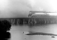 Foggy morning Ruskin, 1976 (clarkfred33) Tags: sp4449 southernpacific sphistory ruskin americanfreedomtrain 1976 scenic railroadscene trestle vintagephoto vintage river littlemanateeriver acl atlanticcoastline aclhistory historic historicphoto