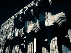 The Wall (rustyruth1959) Tags: nikon nikond3200 tamron16300mm yorkshire whitby outdoor architecture arch wall stonework whitbyabbey ruins church monastery dark light shadows gothic column abbey peforipad