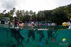 slu_bradh_V55A1051024 (kaufmankronicle) Tags: diving kidsseacamp stlucia