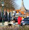 2013 Vlissingen (Steenvoorde Leen - 2.7 ml views) Tags: 2013 vlissingen zeeland dog hond aussie hund doggy australianshepherd perro cane câo chien goereeoverflakkee