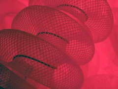 Red Snake (losy) Tags: red snake losyphotography abstract sneaky rot rouge rojo улаан merah κόκκινοσ rood