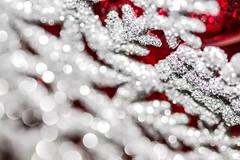 Holiday Bokeh [Explored] (Kate H2011) Tags: katehighley 2016 ef100mmf28macrousm macro macromondays hmm holidaybokeh bokeh bokehballs snowflake silver red star handheld indoor depthoffield texture glitter explore explored