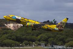 PR-GUO (rafaelborbagriz) Tags: recife decolagem gol os gemeos osgemeos banana podre bananão spotting boeing b738 b737 737 738 takeoff art arte grafite paint megaplane aviation voegol sbrf rec brasil aviação