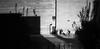 Memorial Union (patrickkuhl) Tags: uwmadison madison madisonwi wisc wisco wisconsin blackwhite blackandwhite monochrome street streetphotography film filmcamera filmisnotdead filmphotography analog 35mm people shadows leica leicam6 m6 avenon 28mm kodak kodakgold expired expiredfilm
