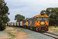2015-03-23 Pacific National BL32-XR553 Strathmerton Murray Valley Hwy 9306 (deanoj305) Tags: pacific national victoria vic australia au 9306 tocumwal goods train locomotive bl32 xr553 strathmerton