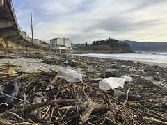 2016-01-24 17 28 10 (Pepe Fernández) Tags: contaminación bolsas plástico basura playa madorra nigrán ecología
