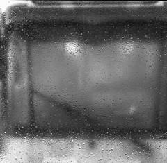 IkoflexIIa-354-Superpan200-ParanolS-8min-7 (photo:::makina) Tags: exportrollei ikoflex iia tessar tram reflection rain