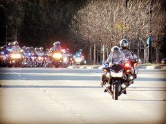 Procession in honor of a fallen officer, (halffullpl) Tags: frisco jerrywalker procession eow police detective motorcycles pattylebedhessphotos photos littleelm texas canon powershot