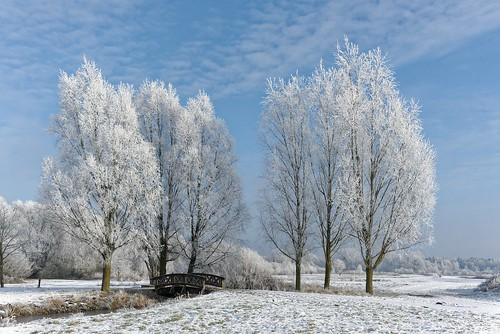 ein Wintertag