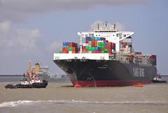YM Wellhead (larry_antwerp) Tags: haven port ship belgium vessel container antwerp schelde yangming seaspan schip ymwellhead 9684665