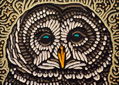 barred owl (Lisa Brawn) Tags: wood portrait canada calgary bird art birds illustration painting design woodcuts graphics artist folkart wildlife canadian carving popart alberta owls woodcut woodcarving woodblock brawn canadiana reclaimed salvaged wildbirds upcycled lisabrawn birdsinart