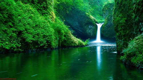 Nature Wallpaper Hd For Pc Atpeek Search Engine