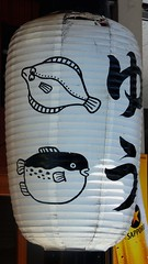 #3024 seafood restaurant () lantern (Nemo's great uncle) Tags: summer sign festival kyoto  lantern gionmatsuri    nishikikojidori