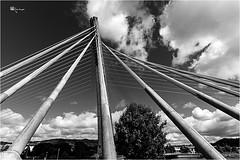 Entre LIneas ... (Emilio Rico Uhia) Tags: puente bn nubes pontevedra lineas cameraraw tirantes puentedesantiago riolerez carpeta17615 bynperfecto