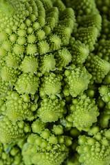 Union Square Greenmarket (MikaJC) Tags: nyc macro green farmersmarket greenmarket veg unionsquare romanescobroccoli romancauliflower