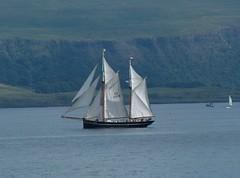Sail Boat, Mull Scotland. (Seckington Images) Tags: scotland sail mull