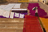 DHOBI WALLAH. Varanasi (Cathy Le Scolan-Quéré Photographies) Tags: varanasi bénarès inde india dhobiwallah dobiwallah linge laundry draps ghats lessive