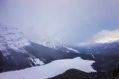 _DSC1925 (andrewlorenzlong) Tags: canada alberta icefields parkway icefieldsparkway peyto lake peytolake