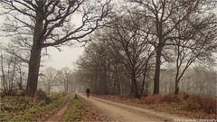 _gravelbiking (l--o-o--kin thru) Tags: achterhoek cycling winterswijk selfie