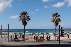 SDIM0339 (heydays) Tags: sigma sigmasdquattro sigmaart30mmf14dchsm israel travel telaviv