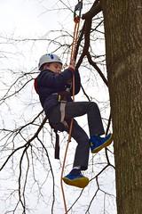 Boy scales tree (Montgomery Parks, MNCPPC) Tags: treeclimbing woodsidepark january2017 2017