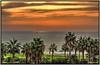 Un nuevo día, saludando desde el Mare Nostrum (Jose Roldan Garcia) Tags: luz libre libertad playa colores mediterráneo mar agua amanecer horizonte momentos palmeras nubes castellón marina
