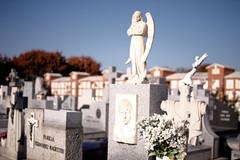 #d (Lys de Kerk) Tags: madrid spain eos 450d eos450d canoneos450d canon sigma sigma30mm14art 30mm 14art 14 nd nd30 nd3000 ndfilter graveyard fuencarral cementario cementariofuencarral