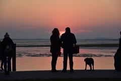 donna, uomo e cane (pianlux) Tags: donna uomo cane ombre tramonto sun sera guardano burano venezia tramonta sole orizzonte mare sea silhouette controluce controsole luce
