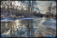 reflections through ice (asm_naumann) Tags: winter nature naturephotography ice frankenberg hessen hesse germany deutschland europe europa river fluss reflection trees