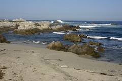 Lover's Point (birdgal5) Tags: california montereycounty pacificgrove loverspoint nikon d100 24120mmf3556gvr