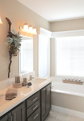 """Acacia Master Bath • <a style=""""font-size:0.8em;"""" href=""""http://www.flickr.com/photos/126294979@N07/32501289310/"""" target=""""_blank"""">View on Flickr</a>"""