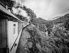 The Highline. (yeahwotever) Tags: dsng clerestorycoachusstock colorado narrowgauge durangosilverton