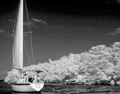 sailing key largo (GR167) Tags: 100faves lifepixel keylargo blacksky floridakeys blackandwhite ir ruleofthirds bw monochrome 3514l