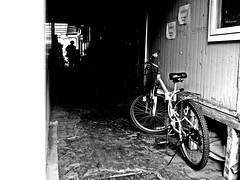 Somebody... (HARU1231) Tags: streetphoto snapshot snap street candid city bw monochrome blackandwhite bicycle asia panasonicgf1 microfourthird southkorea