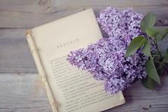 .Thank you feels far too small. (qqp) Tags: wood lilac topview oldbooks purble purplelilac vintagebooks flowerandbooks