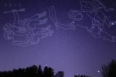 ふたご座流星群 画像40