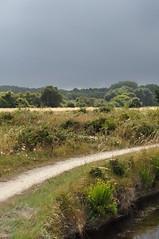 Marais d'Olonne (Chaufglass) Tags: france eau marais bassin vende olonne aquatique zonehumide