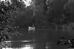 alone on river (picturesbywalther) Tags: bw river boot boat fisherman sw schwarzweiss fluss aare fischer blackwithe