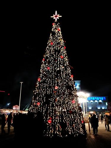 Christmas Tree in Tirana
