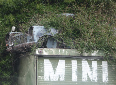 The Flying Car (Patent Pending) (Steve Taylor (Photography)) Tags: mini garage roof overgrown jungle blue muted green white foliage car auto automobile