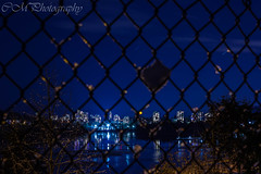 Fenced out. (rystaquay) Tags: lights snowball chainlinkfence fence startrails sky stars snow winter cold nopeople portmoody nightcityscape cityscape nightshots night canonxsi canon