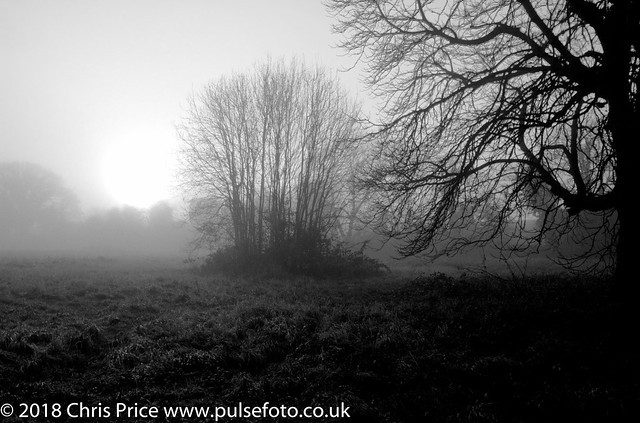 Foggy Day in Bramley