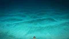 Sands of Time (Stephen Ball Photography) Tags: underwater water waves wave waimanalo watershot aquatech sand sandybeach beach beachbreak ocean pacificocean makapuu makapuubeachpark sea seashore seaside canon canon5dmkiii5d canoneos5dmarkiii ef24mmf14liiusm stephenballphotography stephenball stephenballphoto wwwstephenballphotocom