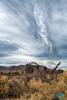 1215 IMG_9924 (JRmanNn) Tags: shoshone skyscape