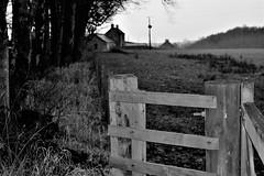 HFF (Harry McGregor) Tags: fencedfriday hff blackandwhite outdoor fences farm fields trees gate monochrome telegraphpoles nikon d3300 harrymcgregor 8 december 2016 dumfrieshouse eastayrshire cumnock ayrshire scotland