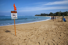 Haena Beach, Kauai (Stephen P. Johnson) Tags: kauai hawaii places haenastatepark haena beach201701150022 pacific ocean beach cpast wave