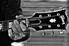 Married to His Gibson (forestforthetress) Tags: bw blackandwhite monochrome guitar hand man omot nikon band gig festival concert stage blues bluesmusic
