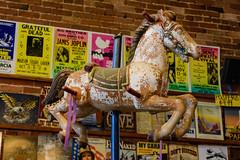 Carousel Horse (PMillera4) Tags: carouselhorse merrygoround